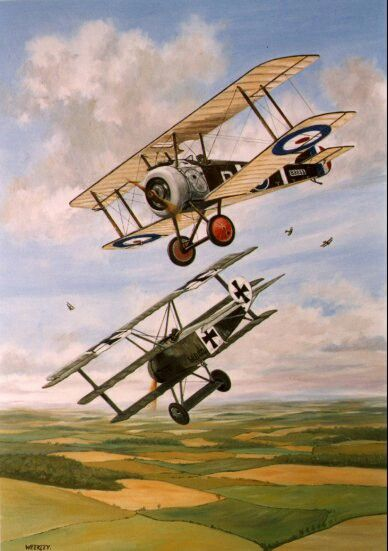 Kurt Wolff (biplanes, airplanes, flying, sky, fields):