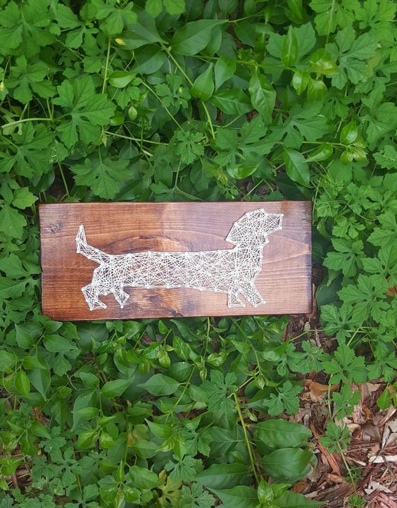 Daschund Weiner Dog String Art / Made to by StressedOutStudios