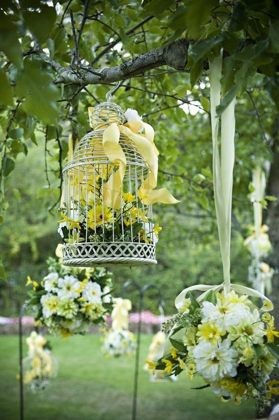 Birdcages!: