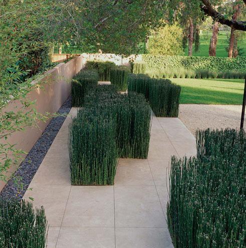 Andrea Cochran - Landscape Architecture