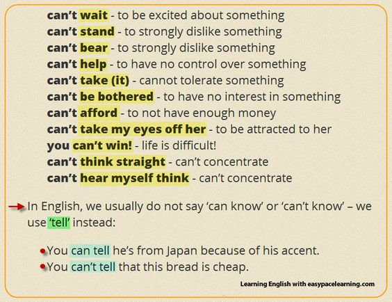 Worksheets Example Of Verbs In Sentence examples of using the word cant in a sentence with their meaning meaning