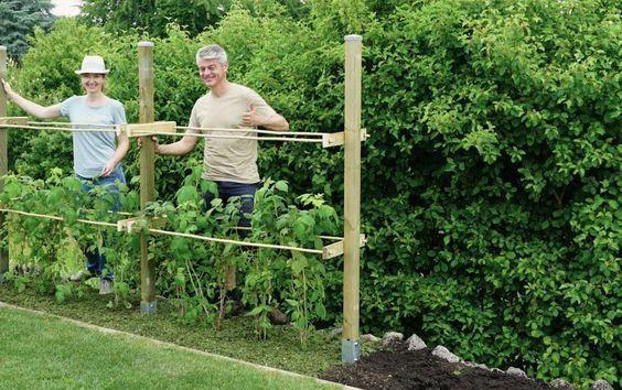 20 Tutorials Met Gehaakte Bloemen Welcome To Blog Raspberry Trellis Organic Gardening Tips Vegetable Garden Design