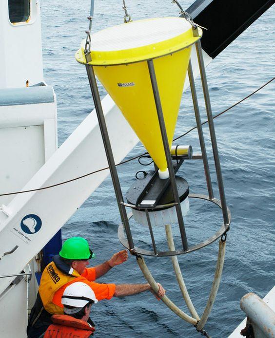 La USAL estudia el impacto causado en el ecosistema marino antártico por la acidificación del Océano Austral fruto de la absorción de emisiones industriales de CO2 | Sala de Prensa