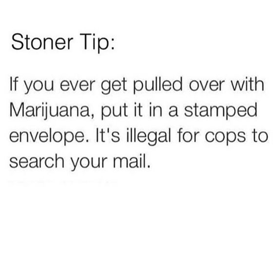 This doesn't really help because some cops don't care and they will check the envelope anyway