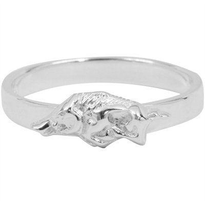WANT!!!!!  Arkansas Razorbacks Ladies Sterling Silver Slim Logo Ring  $24.95