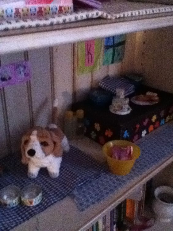 The dog room slash kitchen