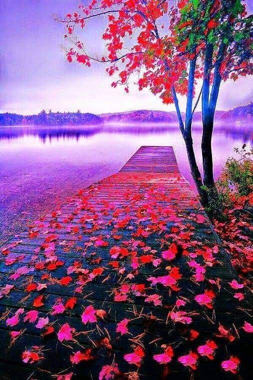 Pin By James Coblentz On Beauty Nature Pictures Beautiful Nature Wallpaper Nature Photography