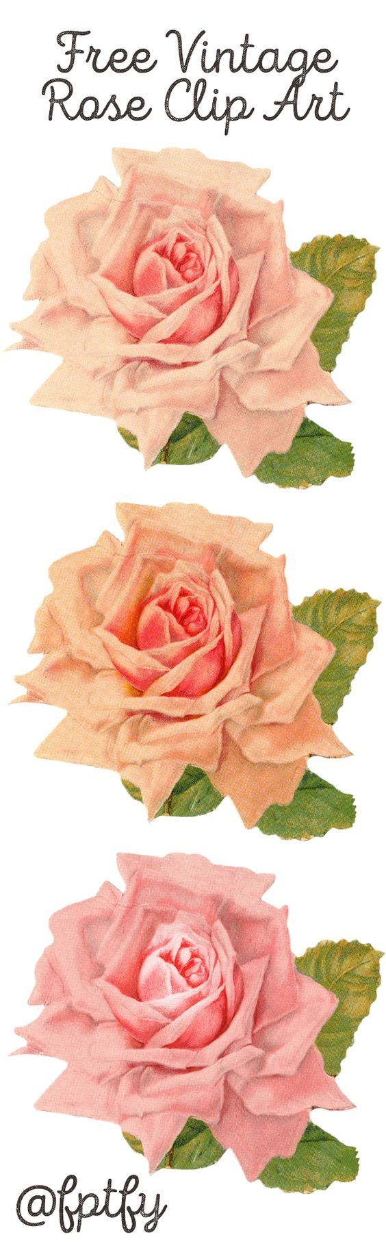 Free Beautiful Vintage Rose Clip Art available for personal and commercial use! Download today and other amazing images graphics!: