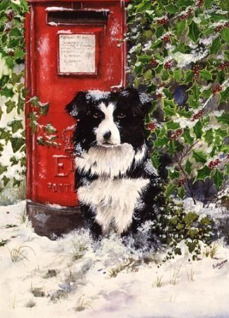 Border collie with postbox-watercolour-xmas card design
