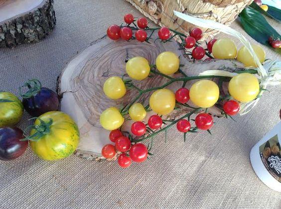 cata tomates by art de fruita