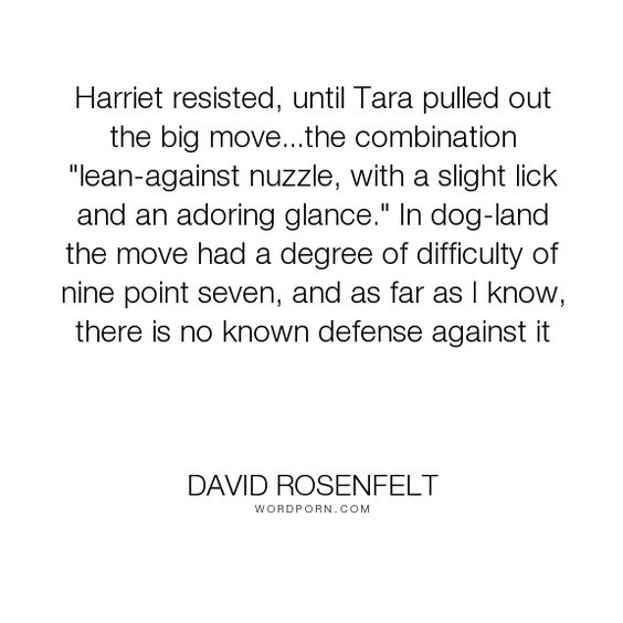 """David Rosenfelt - """"Harriet resisted, until Tara pulled out the big move...the combination """"lean-against..."""". dogs"""