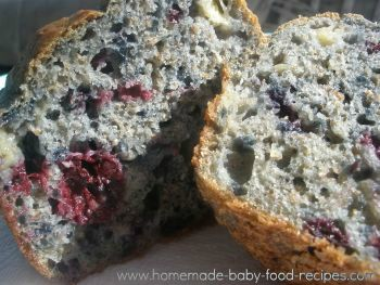 blueberrymuffin http://blog.homemade-baby-food-recipes.com/easy-blueberry-muffins/