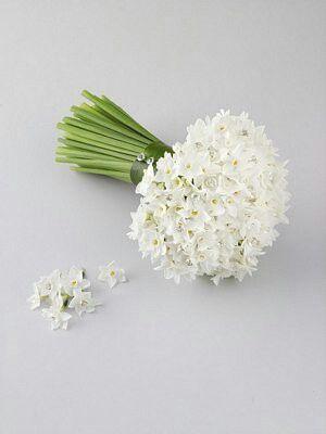 Daffodil bouquet Plan your destination wedding online FREE, check out www.destinationweddingcollective.com #iplannedit