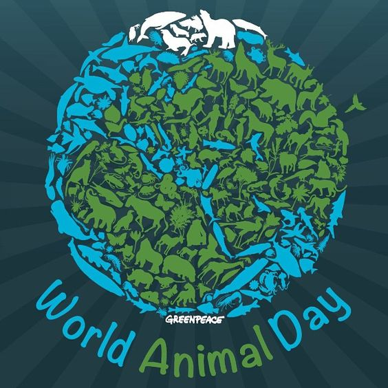 Happy #WorldAnimalDay! Share your favourite animal in the comments: