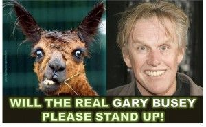 Will the Real Gary Busey Please Stand Up!