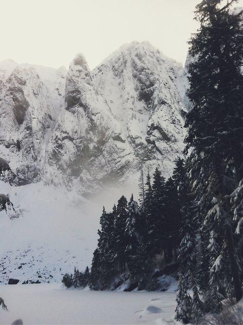 shawnlowe:    Let It Snow