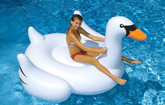 International Leisure Giant Swan // I am one of three people in this world who will understand why this is here. hahaha!