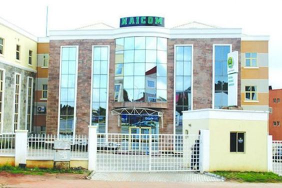 Nubifie Wants Naicom To Review Recapitalisation Policy National