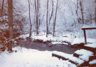 My trip along the Appalachian Trail: Day 5 Next morning at Black\well Creek after a night of snow