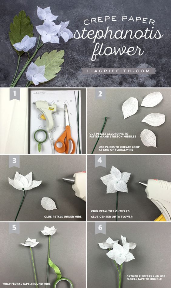 #crepepaper #crepepaperflowers #crepepaperrevival www.LiaGriffith.com: