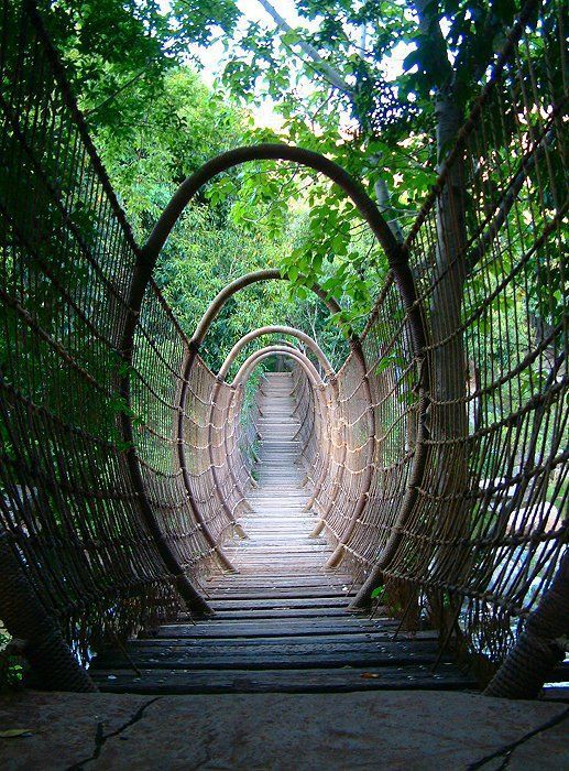 Afrika: Spider Bridge in Zuid-Afrika Toerisme Smalle brug in de natuur