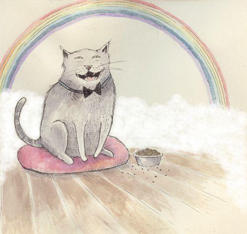 Smile :) Rainbows and kitties