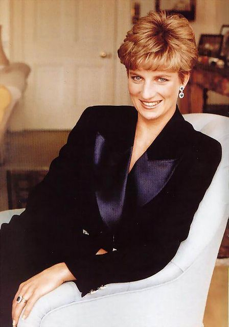 princess diana outline On 31 august 1997, startled by the news of the death of princess diana.