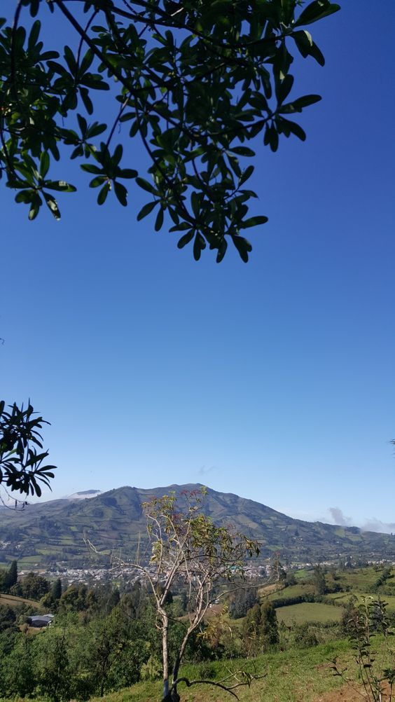 El cantón Chillanes está ubicado en la provincia de Bolívar, Ecuador. Limita al norte con el cantón San Miguel. Al sur con el cantón General Elizalde (Bucay) provincia del Guayas, al Oeste Cantón Babahoyo Provincia del Los Ríos y al este el Cantón Pallatanga Provincia del Chimborazo