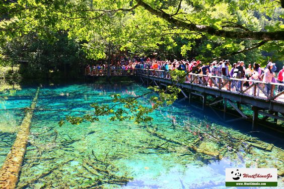 One-Day Private All-Inclusive Tour of World