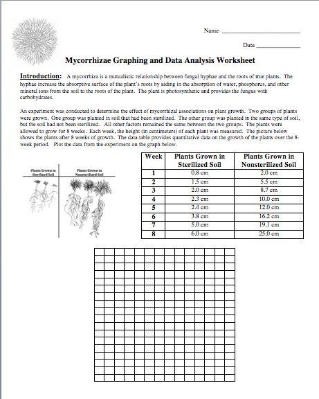 science graphing practice worksheets wiildcreative. Black Bedroom Furniture Sets. Home Design Ideas