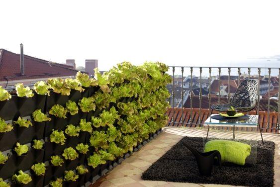 vertikaler garten dachterrasse sichtschutz kombination | rooftops, Gartenarbeit