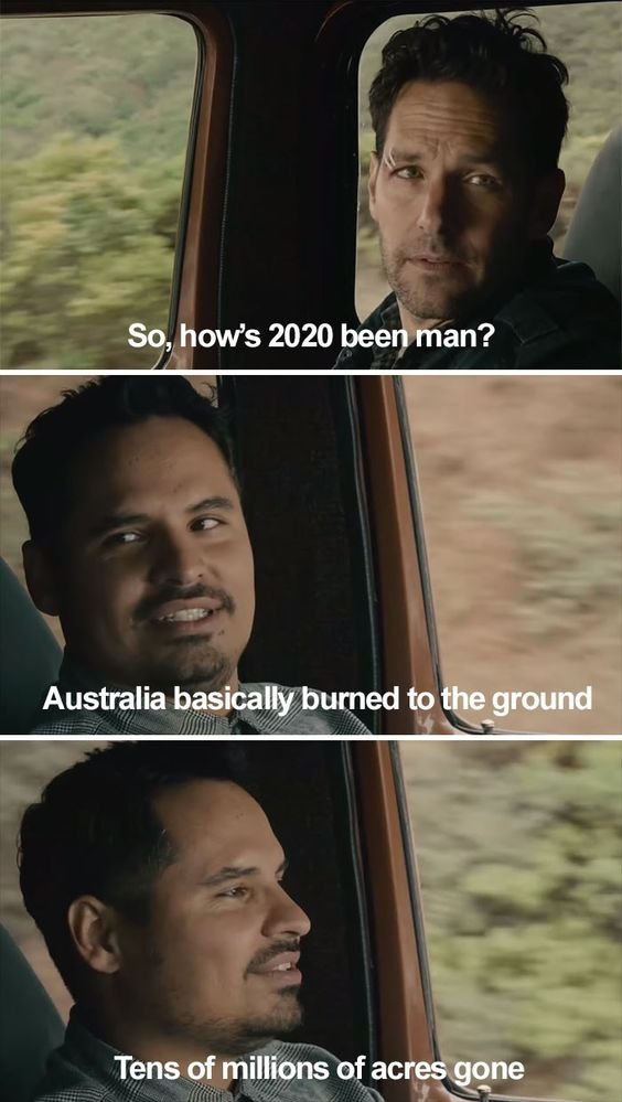 Ant Man Meme Gives A Recap Of All The Horrors Of 2020 So Far Ant Man Funny Photos Memes