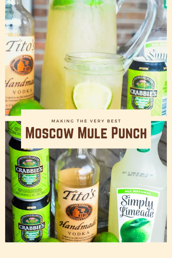 Moscow Mule Punch #Moscow #Punch