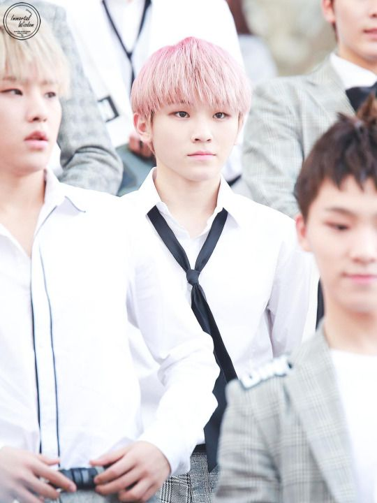 Just Woozi