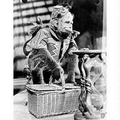 The Wizard of Oz: Pat Walshe as Niko the Winged Monkey from the WB Photo Collection