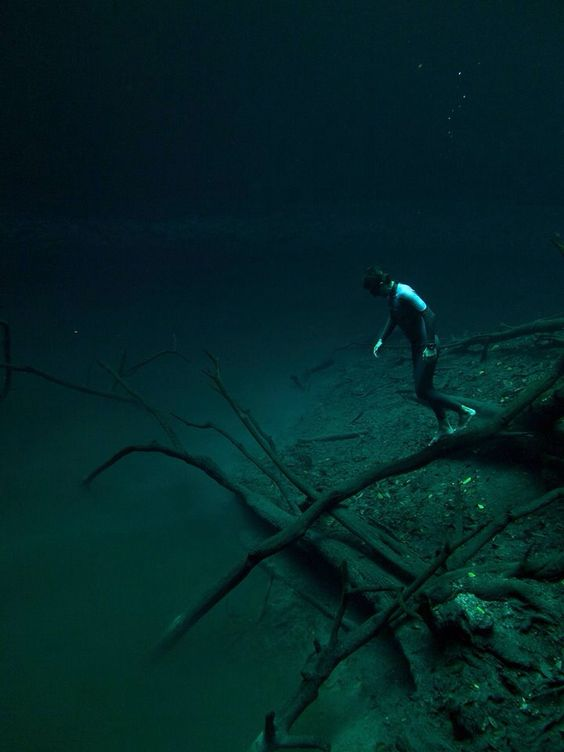 Guillaume NÉRY / Cenote Angelita, Yucatán © Julien Borde