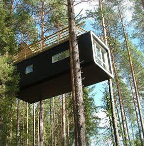 Cabane arbre lune de miel, Suede