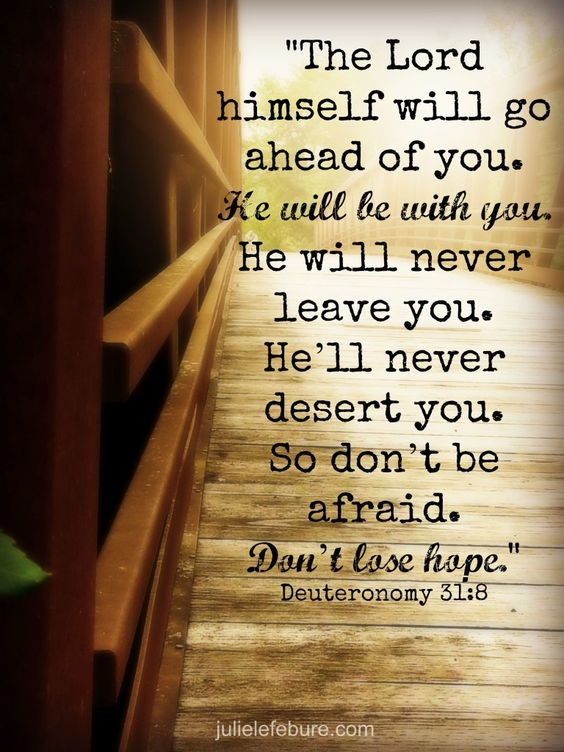 """""""It is the Lord who goes before you. He will be with you; he will not leave you or forsake you. Do not fear or be dismayed."""""""" Deuteronomy 31:8 ESV"""