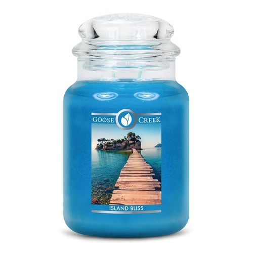 Yankee Candle VIVA HAVANA Large Jar 22 Oz Blue Housewarmer New Wax