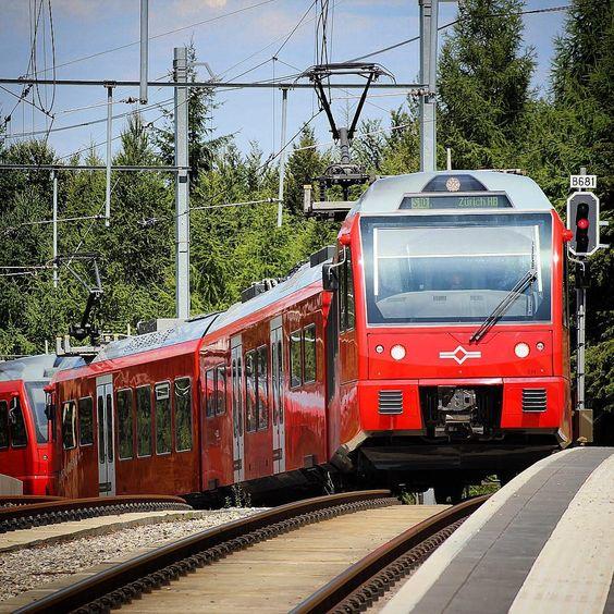 #uetliberg #zurich #sbahn #s10 #stadler #stadlerrail #swiss #switzerland #schweiz #alps #europe #train #trainstagram #instatrain #eisenbahn #eisenbahnfotografie #bahn #szu #sihtalzurichuetlibergbahn