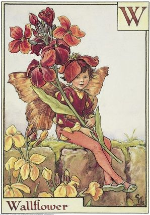 Cicely Mary Barker- Flower Fairies of the Alphabet