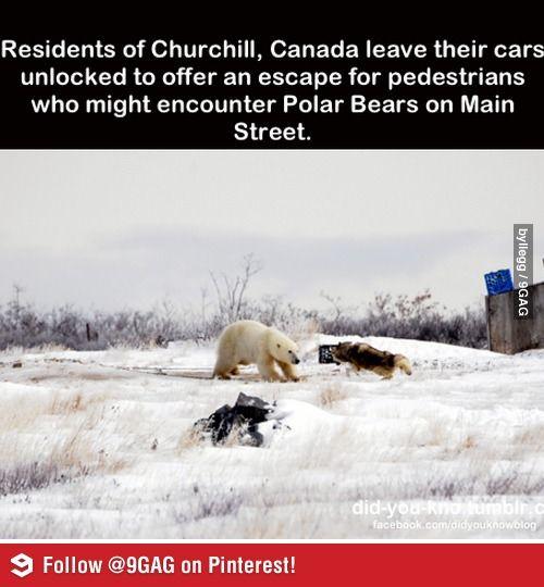 Canada, oh Canada.