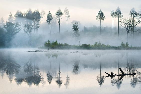 Morning at the lake by Leiph B on 500px