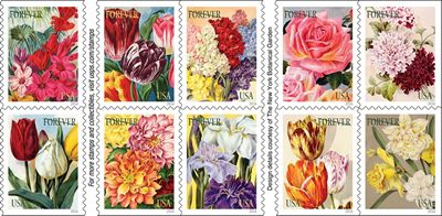 """Botanical Art Forever stamps. SAF Member Creates Floral Designs for New Forever Stamps! USPS is promoting the stamps as (flowers) """"perfect for many of life's special moments"""" A new series of Forever Stamps have Flowers on them & were designed by an SAF member! More about the Celebration Boutonniere Flower Stamp:  This new Forever stamp is similar in design to the two-ounce Celebration Corsage stamp and can be used for weddings and RSVP cards. http://buff.ly/2jvqPcZ http://buff.ly/2jvqPcZ…"""