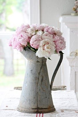 #Pink #peonies in tin watering can
