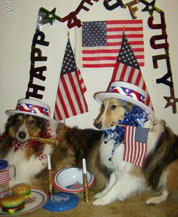 4th party