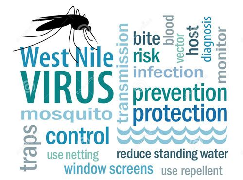 How To Get Rid of West Nile Virus