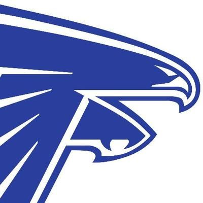 Danvers HS Falcons MA.