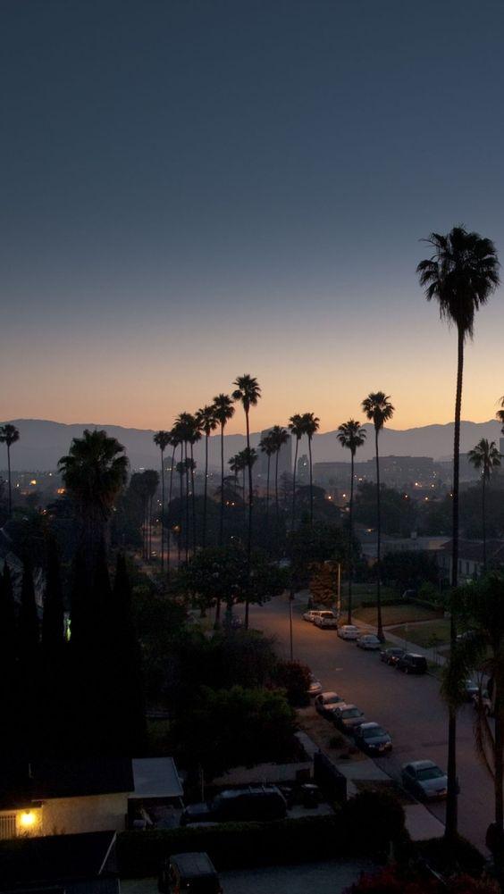 "Los Angeles, California. David Lynch-   ""I love the light. I love the feeling in…"
