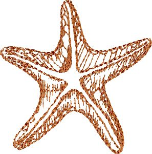 starfish outline - Google Search
